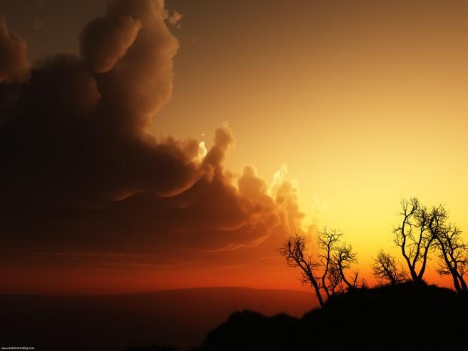 Into Dawn